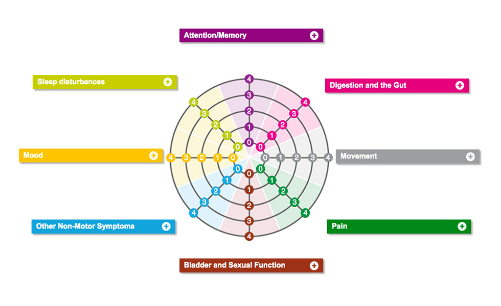 Well-Being Map main structure